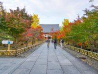 (千利休好みの名勝庭園)智積院 Chishaku-in Temple