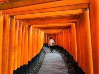 (千本鳥居)伏見稲荷大社 Fushimi Inari-taisha Shrine