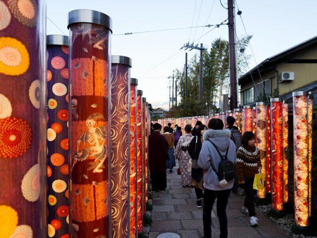 The Kimono Forest