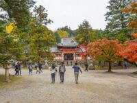 (東大寺鎮守社)手向山八幡宮 Tamukeyama Hachimangū Shrine