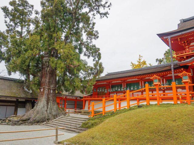 Kasuga-taisha Grand Shrine