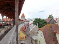 (中世の市壁)タリン市壁 Tallinn City Walls