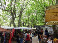 (緑豊かな広場)リス広場 The Place des Lices