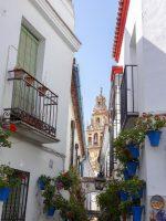 (コルドバのアイコン)花の小道 The Calleja de las Flores