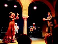 (フランメンコの精神を伝える)フラメンコ博物館 The Flamenco Dance Museum