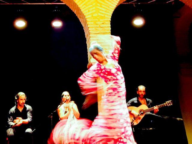 The Flamenco Dance Museum