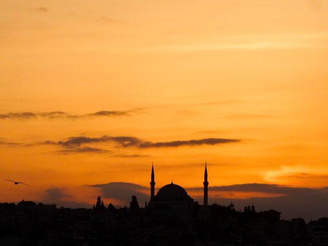 The Yavuz Selim Mosque