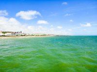 (美しい玉砂利の浜)ブライトン・ビーチ Brighton Beach