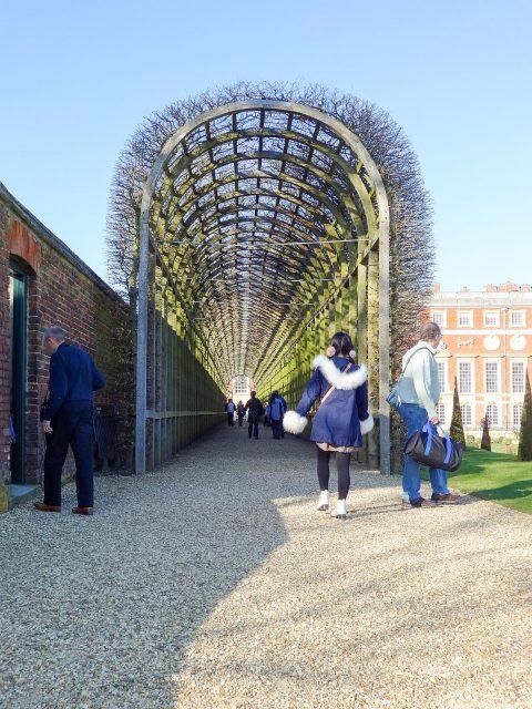 Hampton Court Gardens
