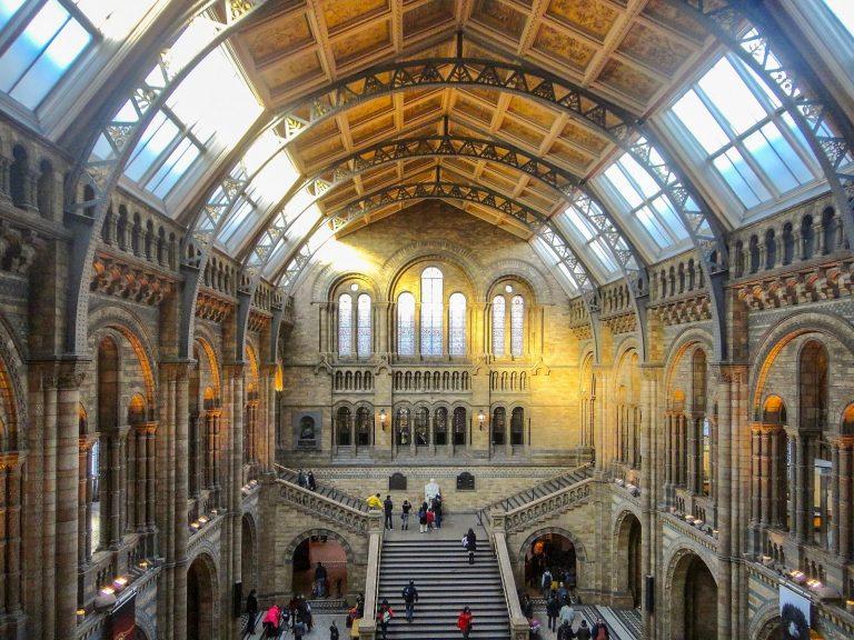 (自然の大聖堂)自然史博物館 The Natural History Museum