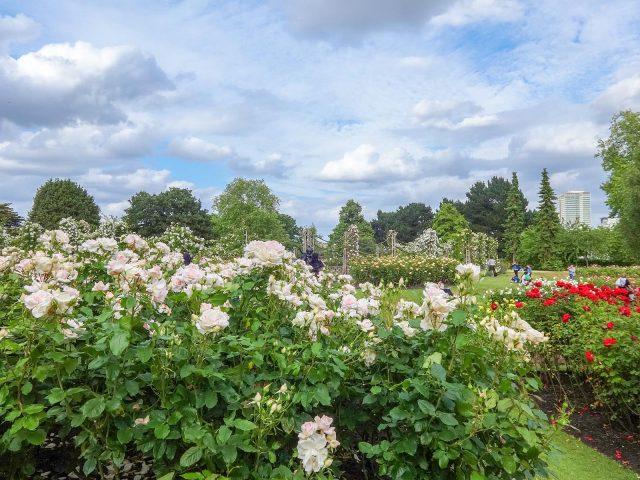 Queen Mary's Gardens